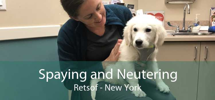 Spaying and Neutering Retsof - New York