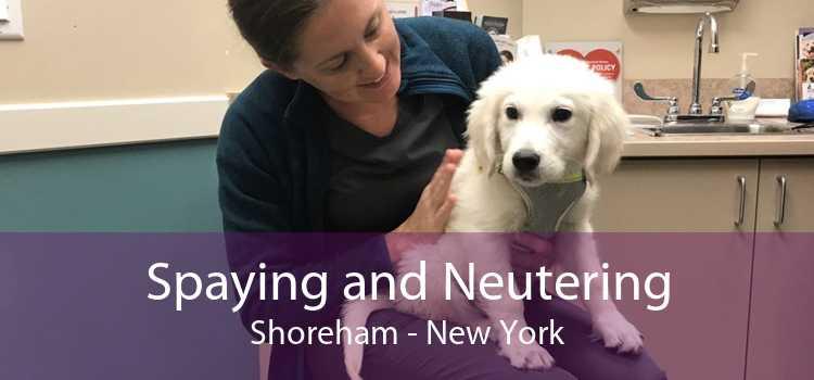 Spaying and Neutering Shoreham - New York