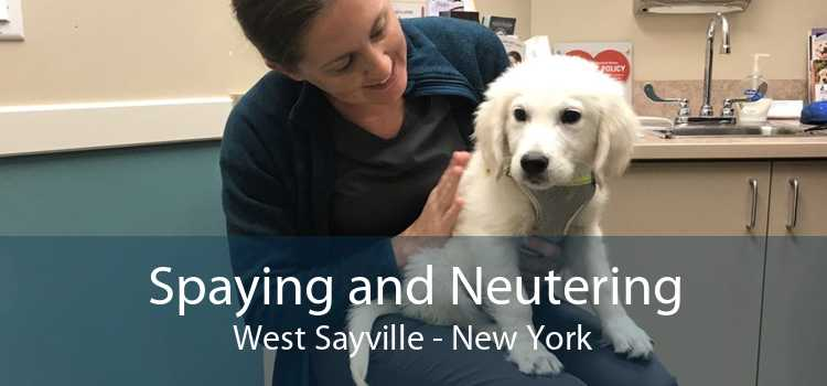 Spaying and Neutering West Sayville - New York