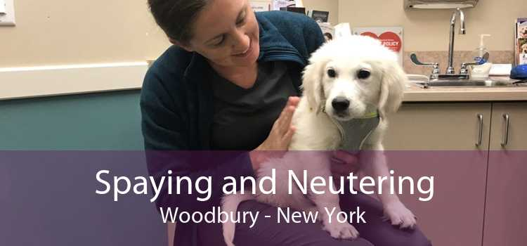 Spaying and Neutering Woodbury - New York