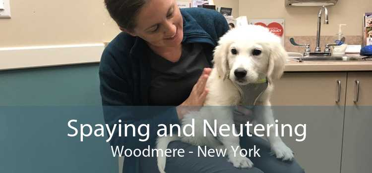 Spaying and Neutering Woodmere - New York