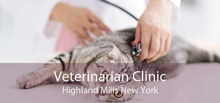 Veterinarian Clinic Highland Mills New York